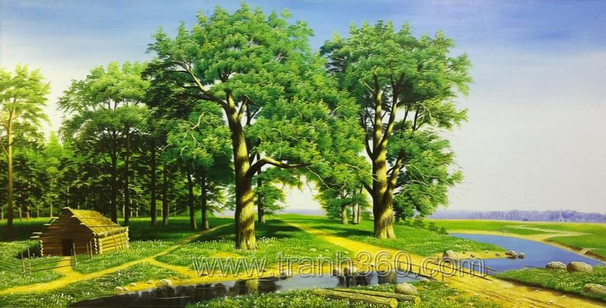 Phong cảnh rừng cây