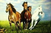 Tranh ngựa rẻ đẹp