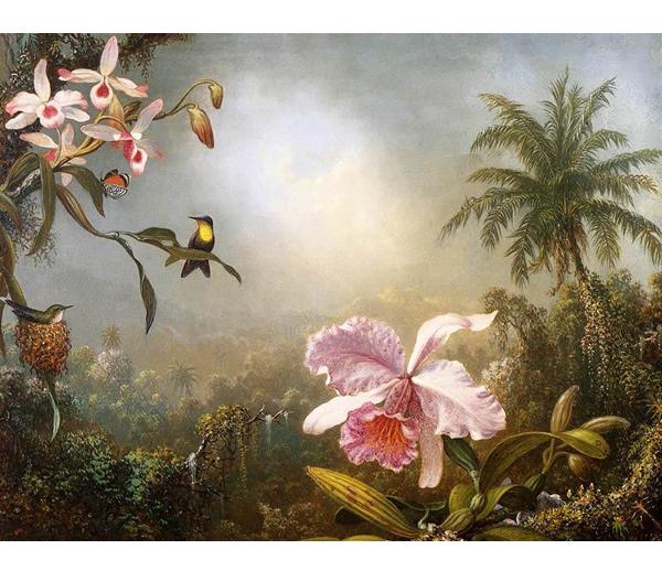 phong canh 36 hoa lan