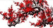 Tranh hoa đào Hà Nội